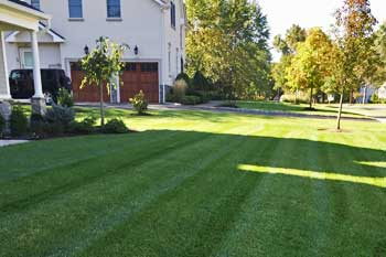 Westfield, NJ home with a professionally mowed and maintained lawn.
